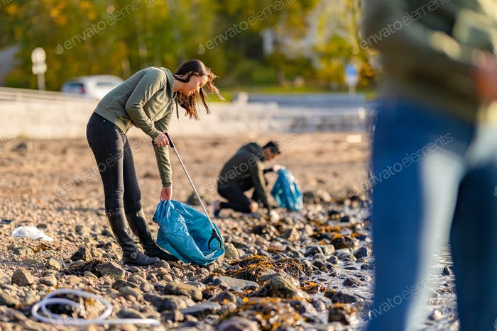 Dedicated volunteers cleaning beach on sunny day