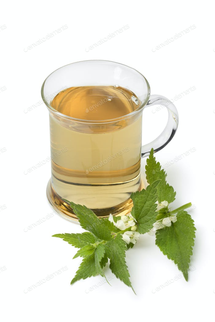 Glass of healthy white dead nettle tea