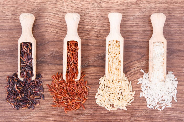 Black, red, brown and white rice on wooden scoop, healthy nutrition concept