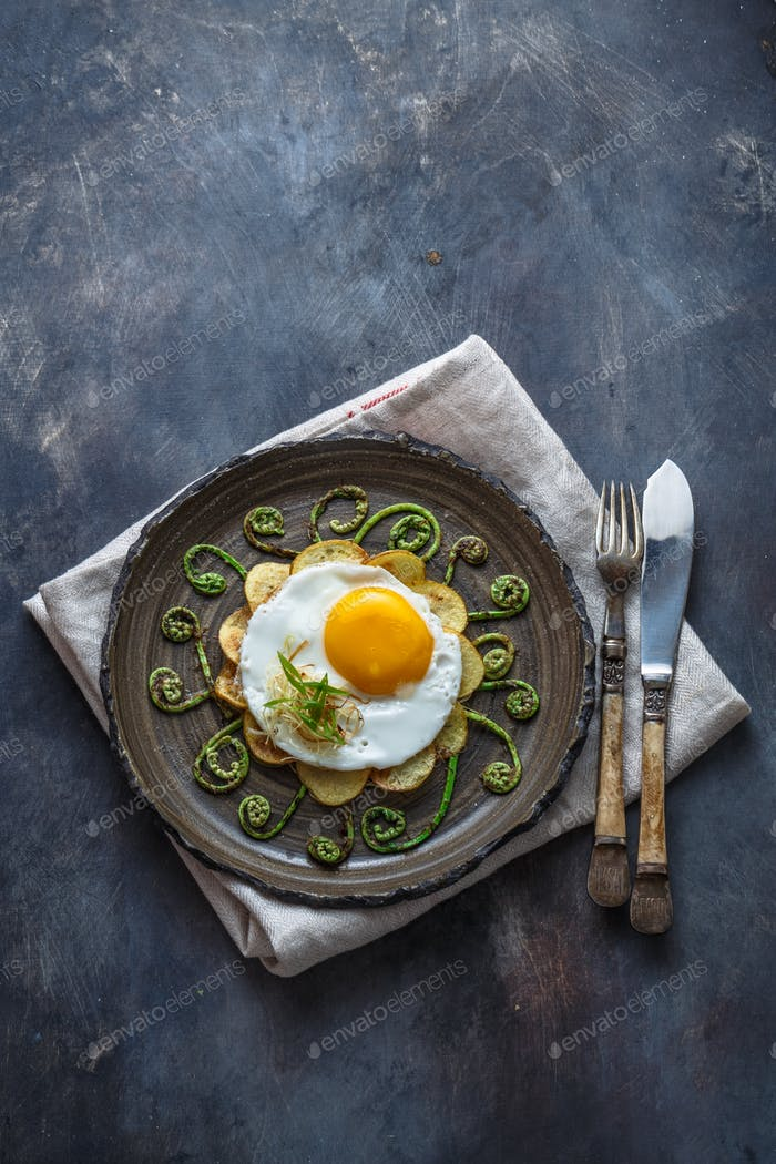 Fried egg and stir fried fern sprouts, copy space