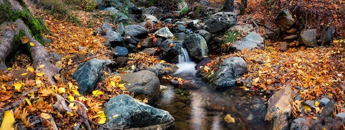 Waterfall on a mountain river in the autumn forest