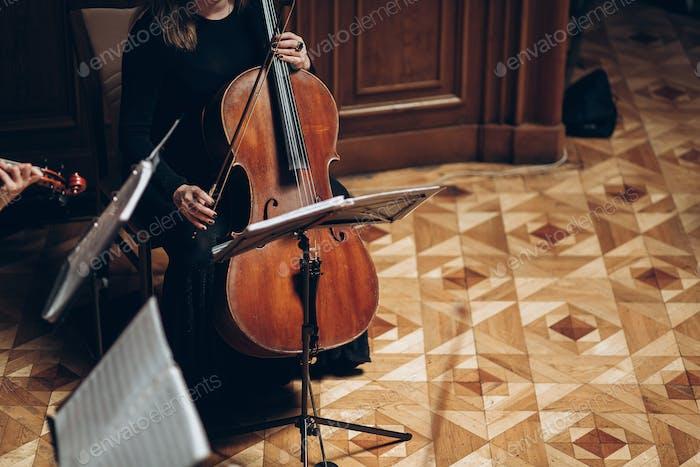 Elegantes Streichquartett im Luxuszimmer