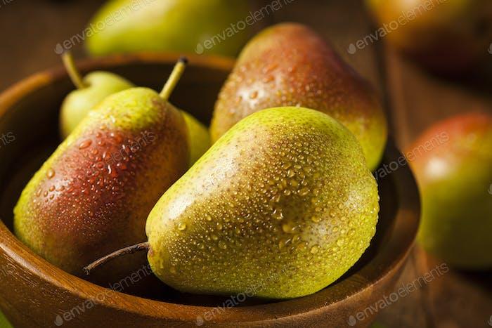 Grüne Bio gesunde Birnen