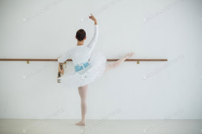 Ballerina practicing ballet dance
