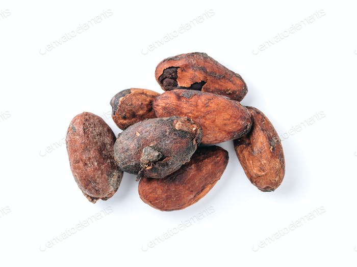 Raw cacao beans isolated white