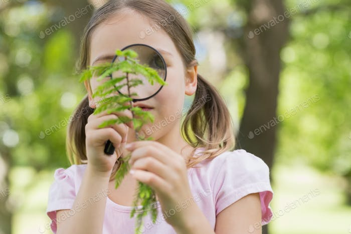 Young girl examining leaves with a magnifying glass at the park