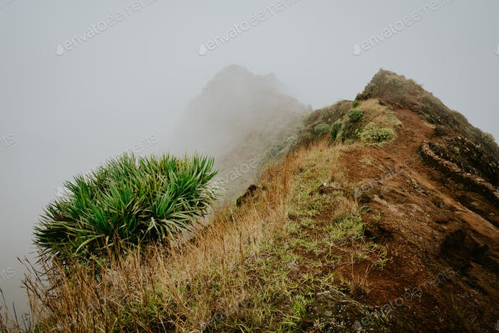 Misty trail leads along the mountain ridge. Path and steep slopes hidden in the fog. Santo Antao