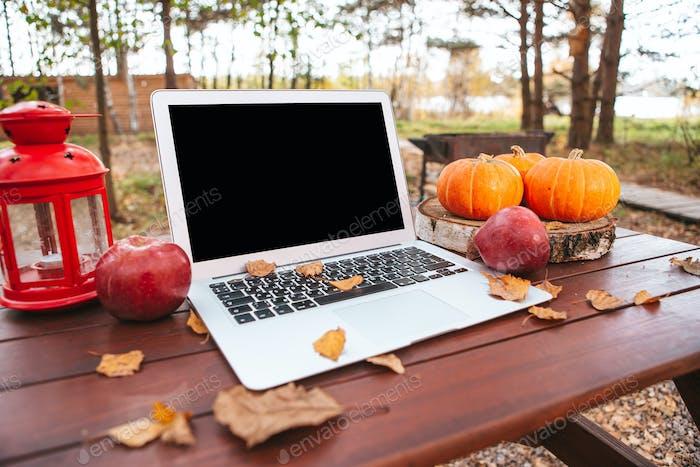 Orange pumpkin and leaves near laptop computer on a table. Autumn season time