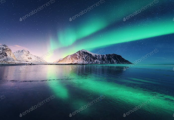 Northern lights in Lofoten islands, Norway. Green Aurora borealis