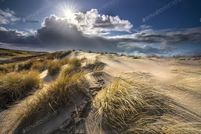 sunshine over sand dunes at sea coast