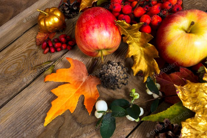 Thanksgiving background with apples, golden oak leaf