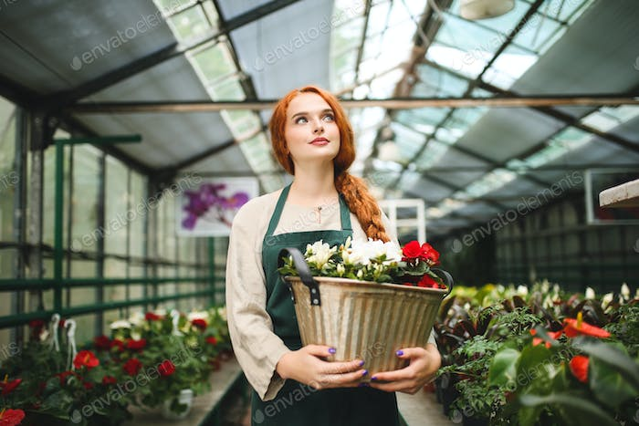 Nice pensive florist in apron standing and holding flowers in metal pot dreamily looking aside