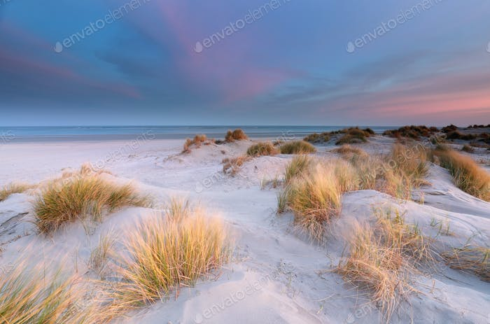 sand dunes by North sea beach at sunrise