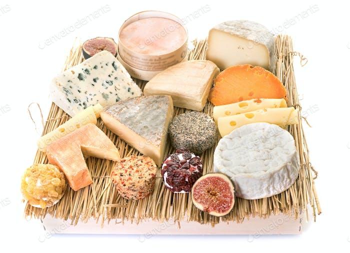 cheeses in studio