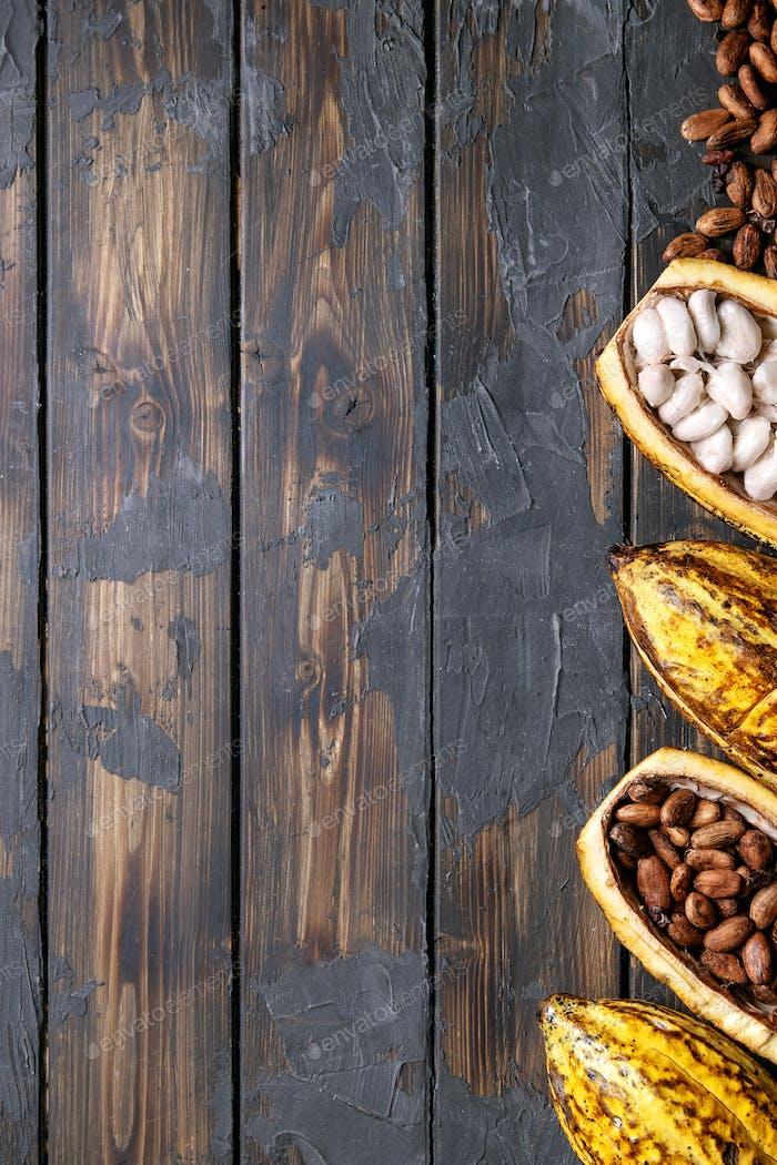 Kakaofrüchte dekoriert mit frischen und trockenen Kakaobohnen