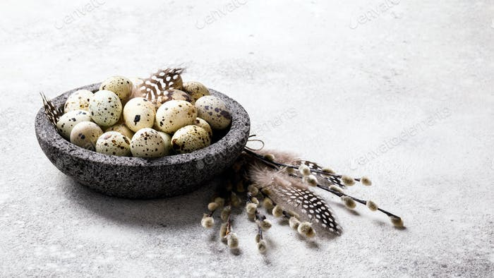 Easter holiday concept.Quail eggs in a plate