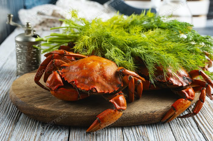 gekochte Krabbe