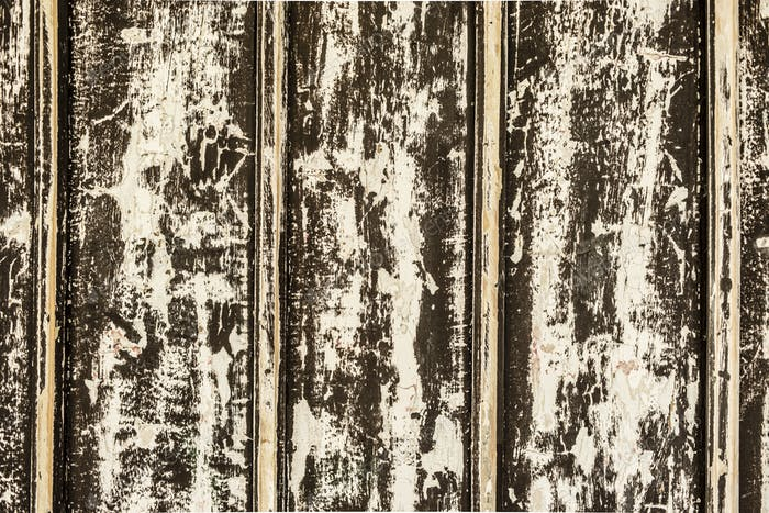 Aged wood wall made of planks with chipped white paint.