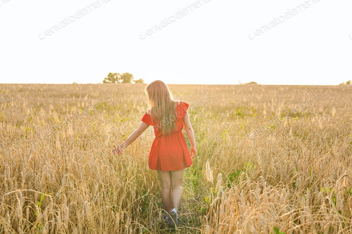 happiness, nature, summer, autumn, vacation and people concept - young woman in the field from back
