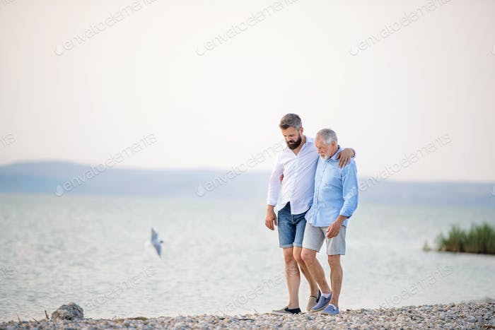 Senior father and mature son walking by the lake. Copy space