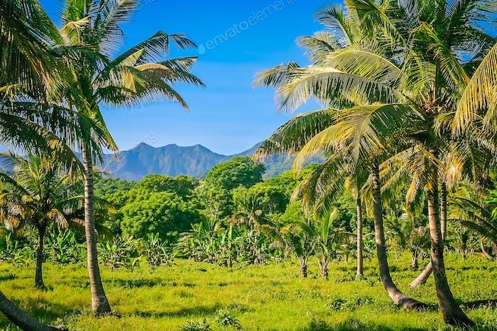 Landscape of Sumbava Island