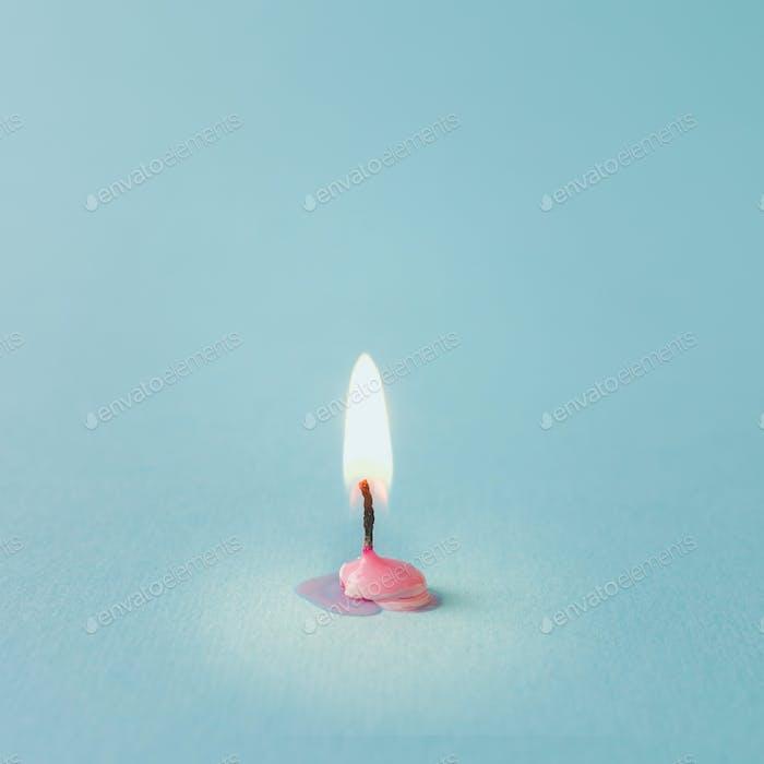 Burnt out pink candle on blue background. Minimal timeline concept.