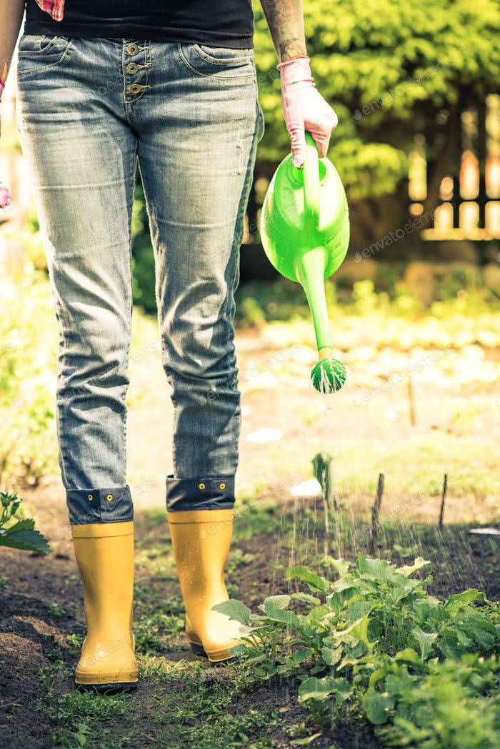 Young woman watering vegetables in wellies