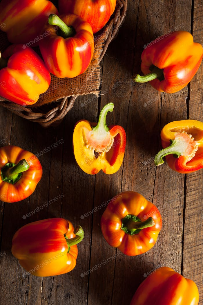 Raw Organic Striped Red Bell Pepper