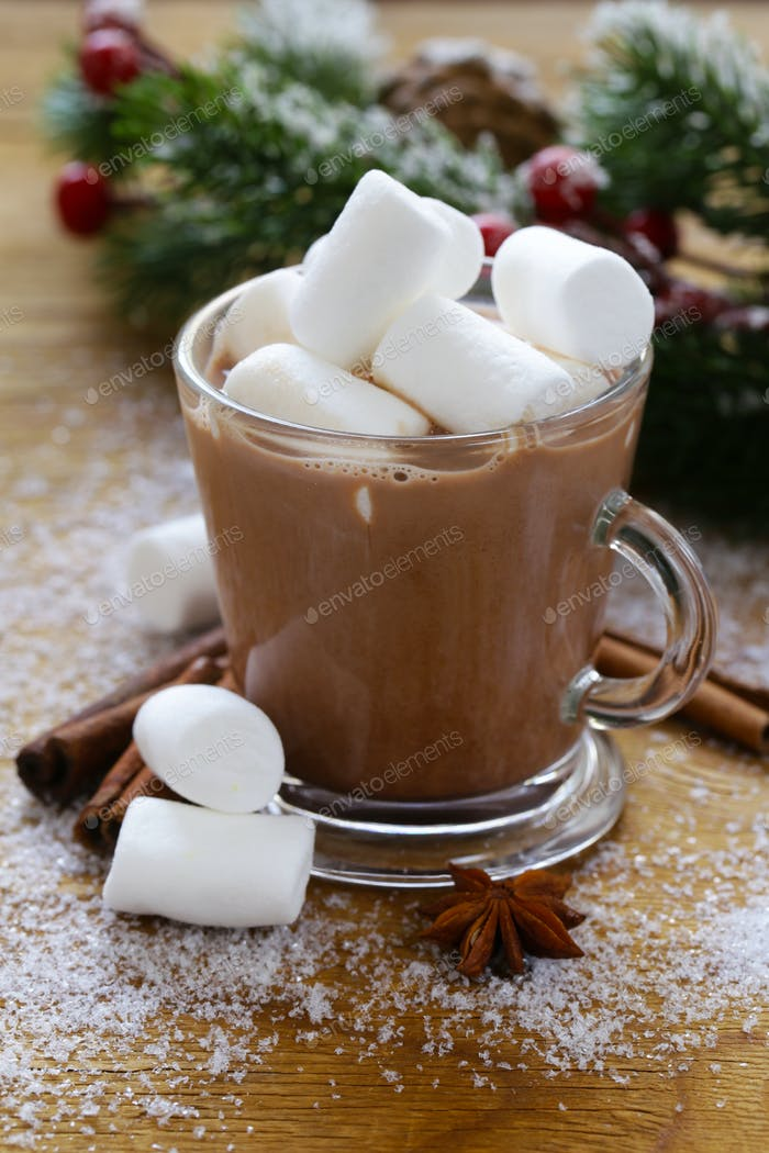 Sweet Hot Cocoa With Marshmallows