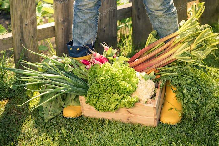 Yellow wellies and vegetables