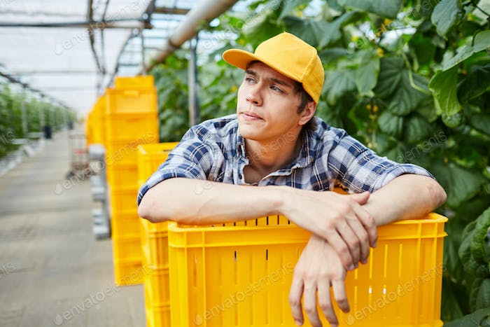 Lazy worker of greenhouse