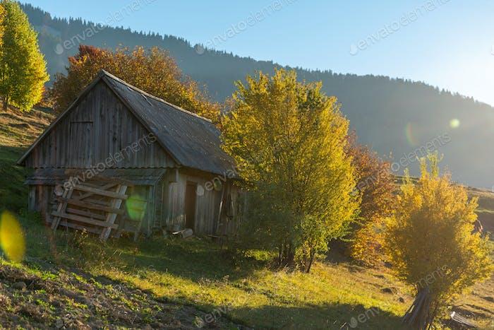 Beautiful wooden house during fall peak season