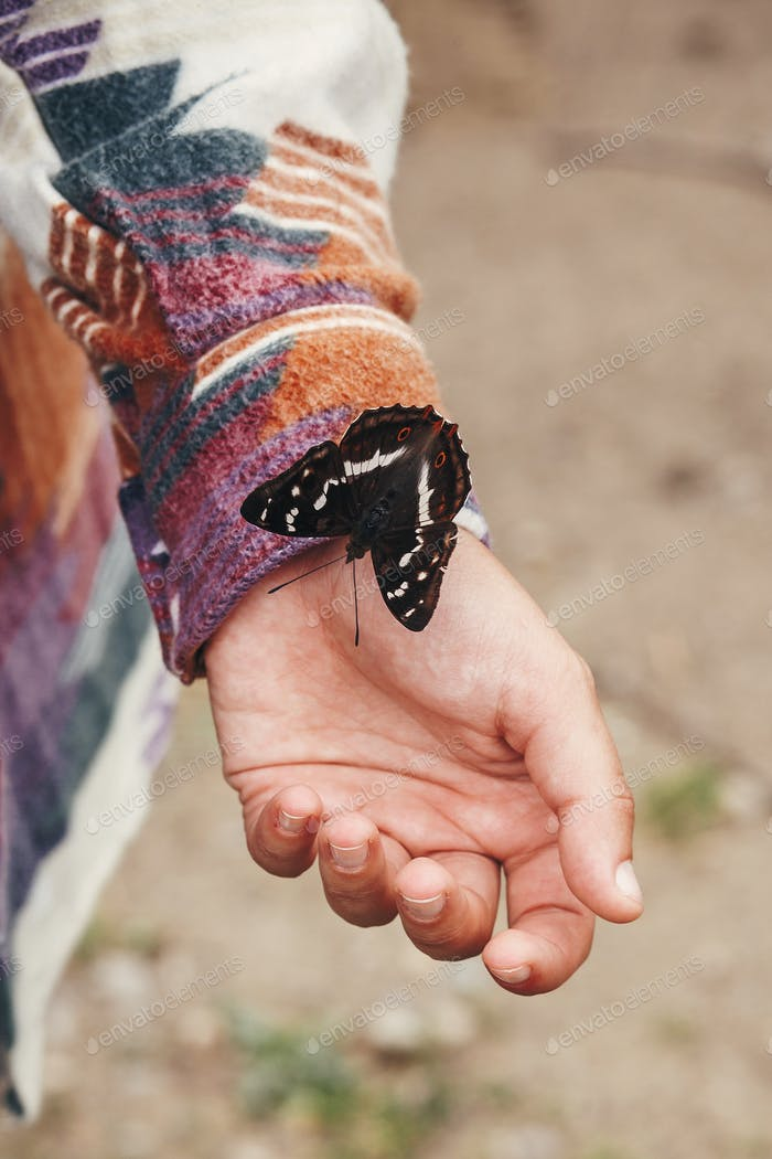 Beautiful butterfly on girl hand