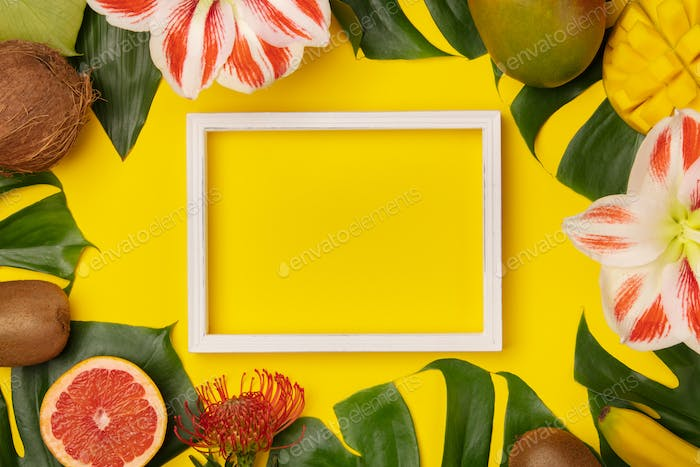 tropical fruits and plants and white frame for your text on yellow background2-4929