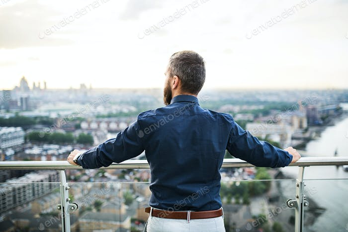A rear view of businessman standing against London view panorama at sunset.