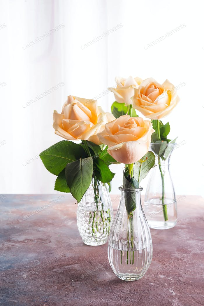 Beautiful fresh cut beige Roses in glass vase on stone background. Minimal floral composition for