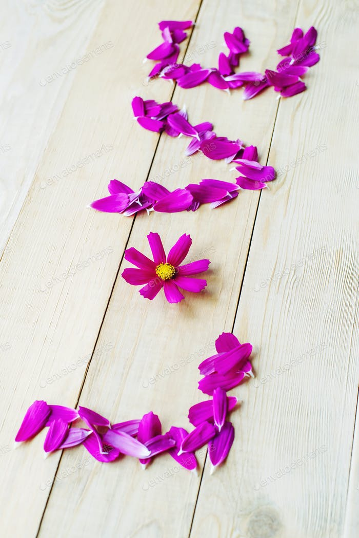 lettering of love of petals cosmos flowers lay on wooden table