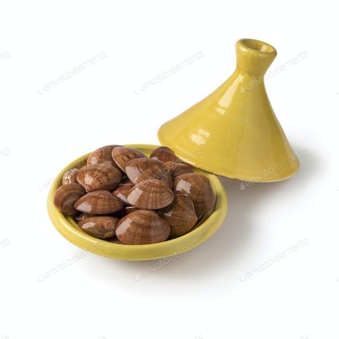 Traditionelle marokkanische Tajine mit frisch rohen geschlossenen glatten Muscheln