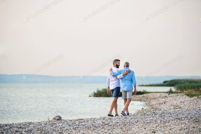 Rear view of senior father and mature son walking by the lake. Copy space