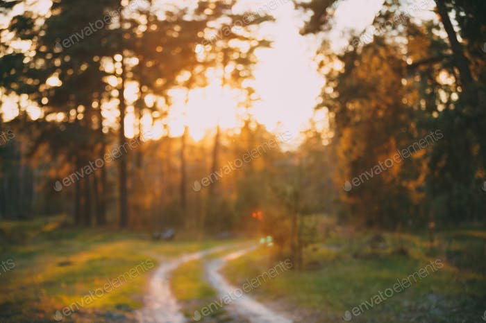 Abstract Autumn Blurred Forest Road At Sunset Or Sunrise Backgro