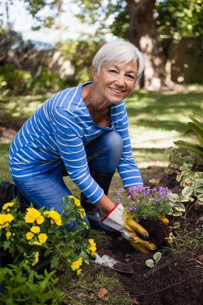 Portrait of smiling senior woman planting flowers