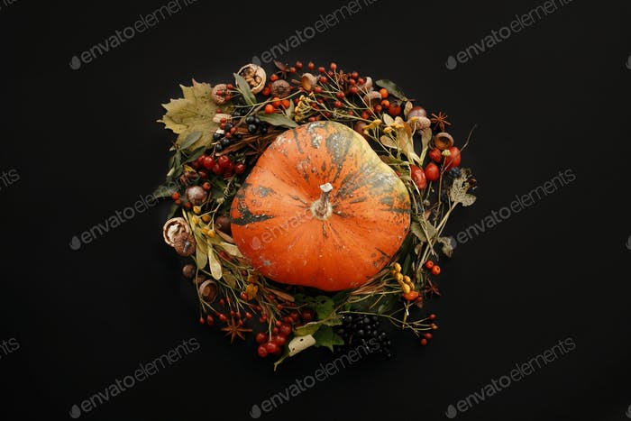 Autumn Wreath Flat Lay. Pumpkin in Fall leaves circle