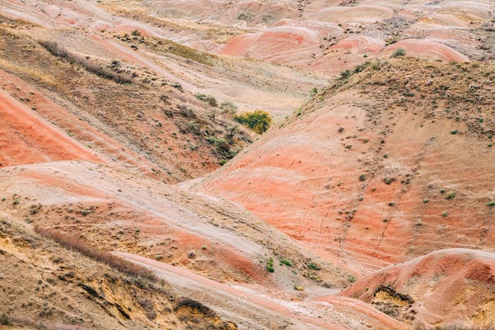 Rote Felsen In der Wüste Gareja, Region Kacheti, Georgien. Herbstland