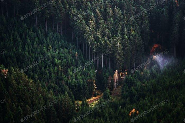 Nationalpark Böhmische Schweiz