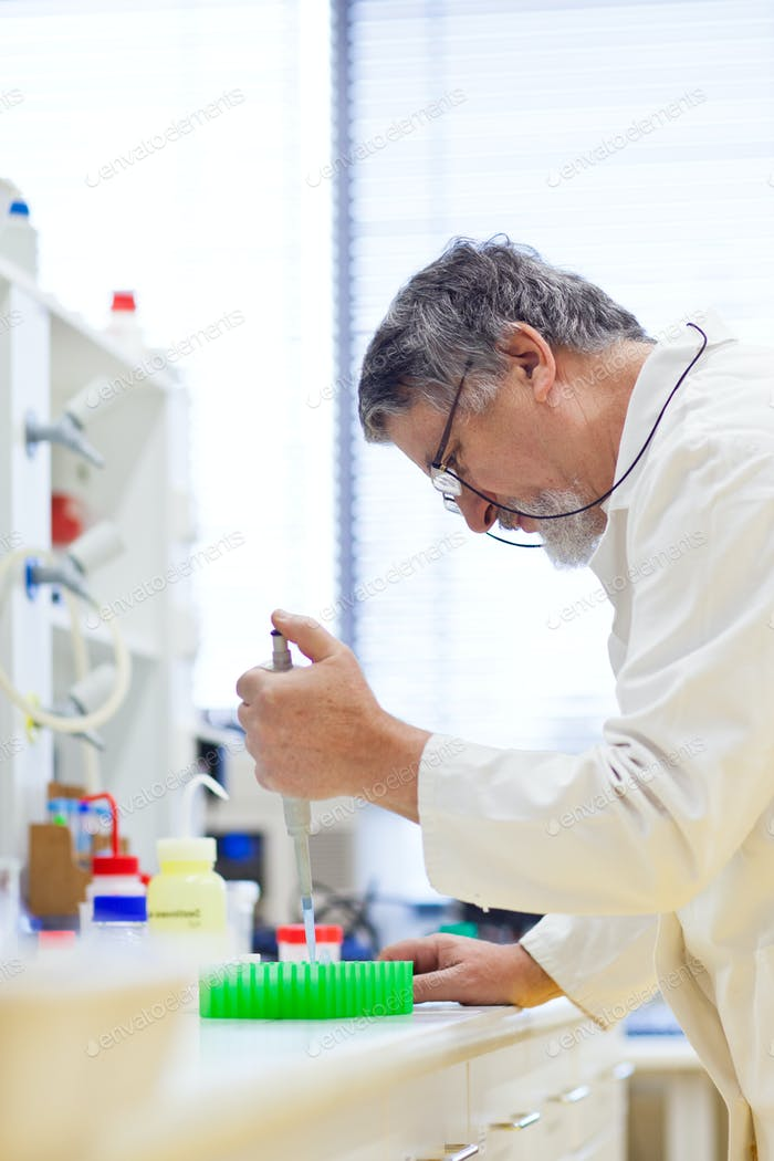 Thumbnail for senior male researcher carrying out scientific research in a lab