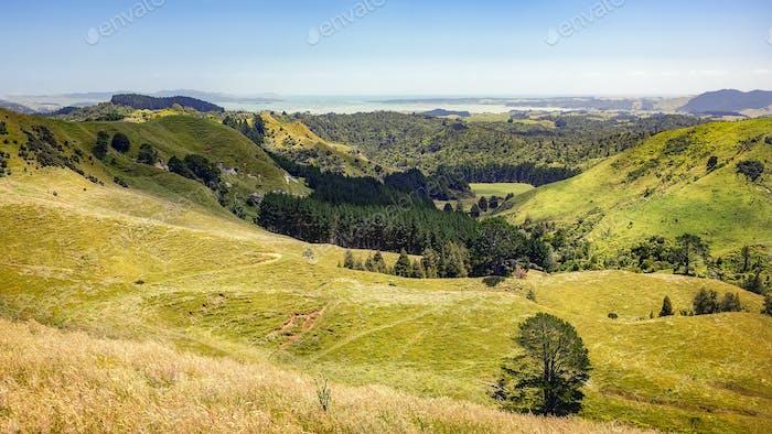 Horizontal típico en el norte de Novedad Zelanda