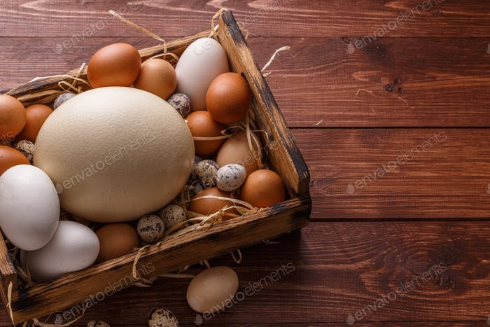 Different size eggs on a straw in a box, place for wording