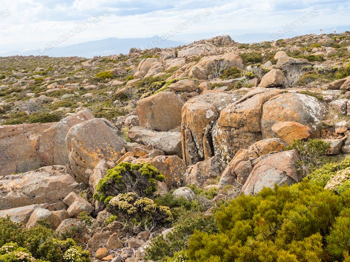 Mount Wellington Plateau