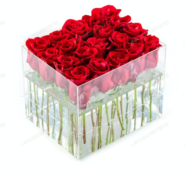 Bunch of red roses in container over white