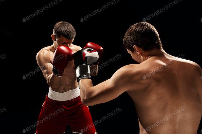 Zwei professionelle Boxer Boxen auf schwarzem Hintergrund,